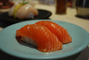 El salmón y el ecologismo exagerado