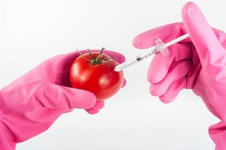 Modified Tomato