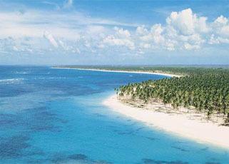 Alquiler de móviles y portátiles en Punta Cana