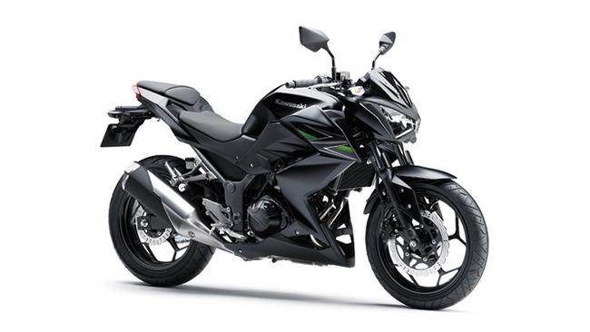 Kawasaki Z250/300