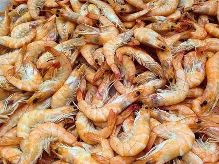 Shrimp 727214 1920