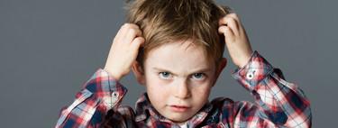 Los piojos también vuelven al cole: 11 preguntas resueltas sobre cómo evitarlos y combatirlos