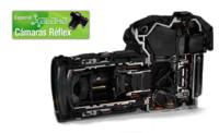 Partes de un cámara réflex digital (II)