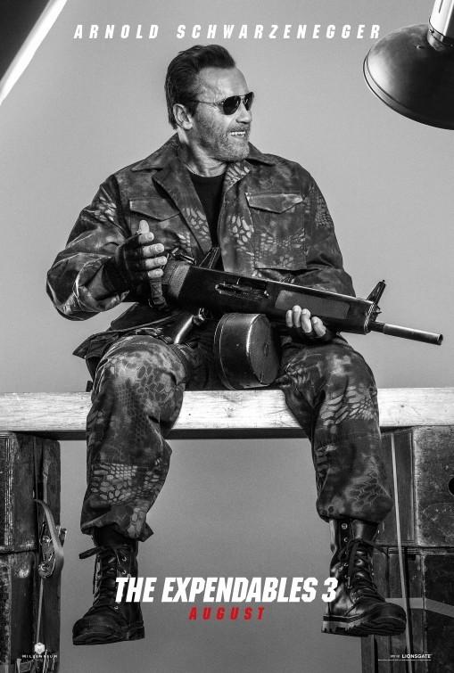 Foto de Carteles de 'Los Mercenarios 3' (15/36)