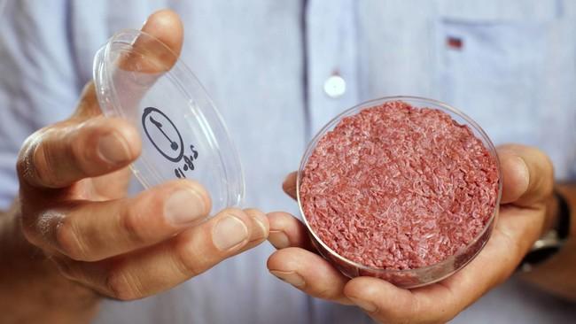 hamburguesa-laboratorio