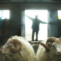 La islandesa 'Rams' triunfa en la 60ª Seminci