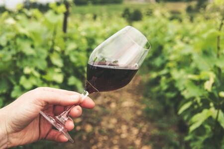 Las grandes mentiras del vino moderno: entre la pseudociencia y el esnobismo