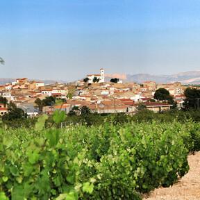 Vinos de Jumilla: conoce la uva monastrell con estas 11 bodegas del Altiplano