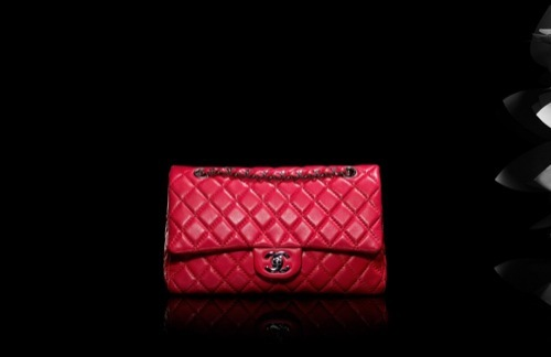 Foto de Chanel, colección bolsos Otoño-Invierno 2009/2010 (5/13)