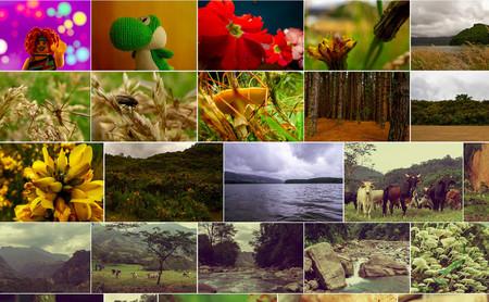 El nuevo cambio de Flickr es la oportunidad de la plataforma para regresar a sus años dorados