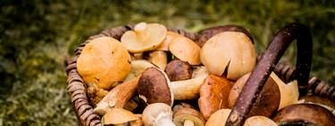 12 recetas con setas de otoño para dar comienzo a la temporada como es debido