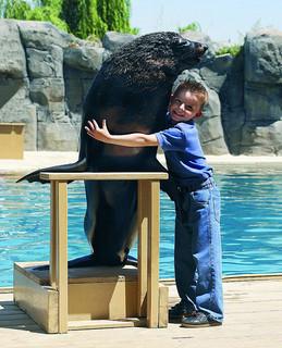 Llega la Navidad a los talleres infantiles del Zoo Aquarium y de Faunia en Madrid