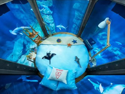 Duerme entre los tiburones del acuario de París... si te atreves
