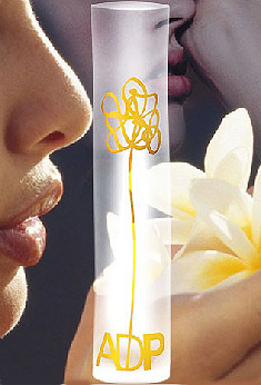 Ya tenemos nominados para los Premios 2008 de la Academia del Perfume