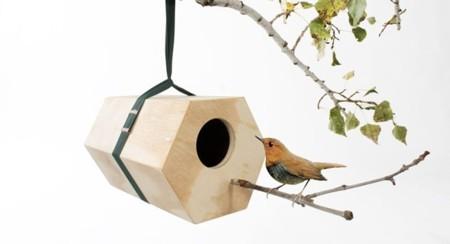 Neigbirds de Andreu Carulla