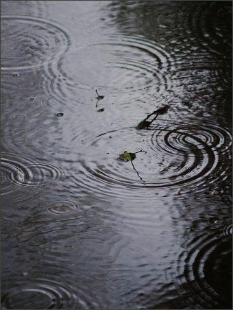 Las cifras más curiosas del agua (I)