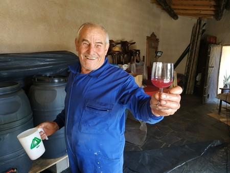 De Malasaña a Zamora: así es la vendimia para un novato que no ha visto una viña en su vida