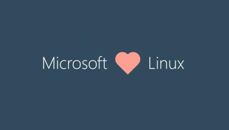 Ms Linux