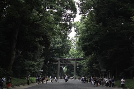 Yoyogi Park 3403524 1920