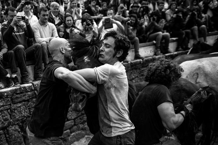 Foto de Daniel Rodrigues (7/11)
