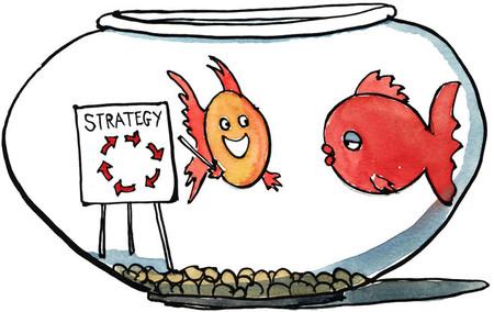 Cómo afrontar algunos proyectos de consultoría: catarsis empresarial