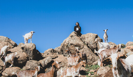 Maria Goats B