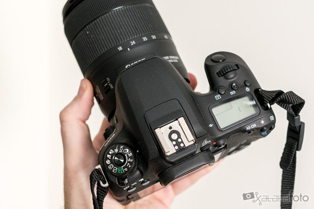 Canon77d 06637