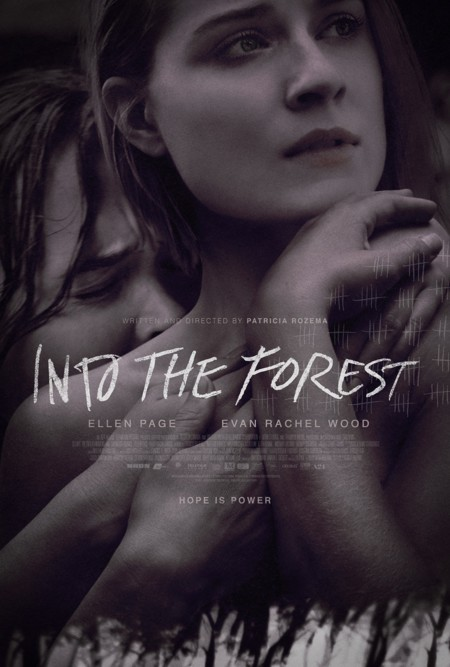 Into The Forest Cartel