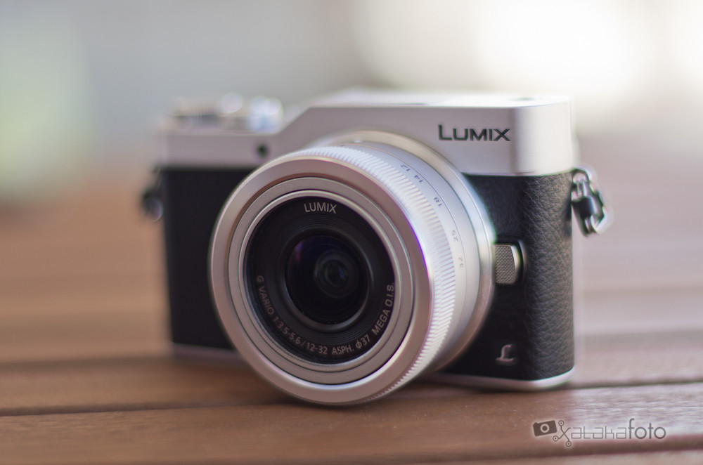 Panasonic Lumix Gx80009