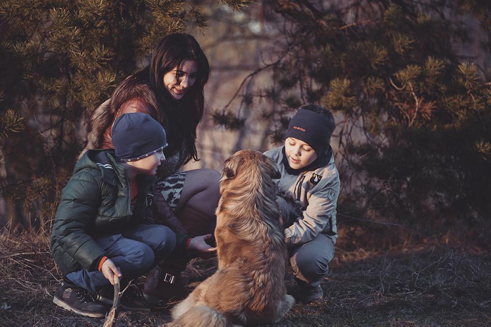 Como Fotografiar Mascotas I Perros 5