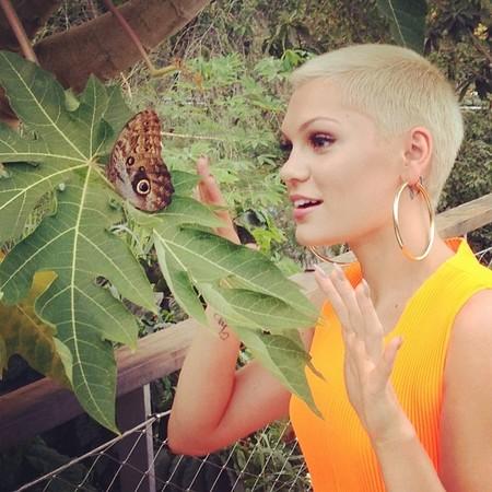 Jessie J rapado