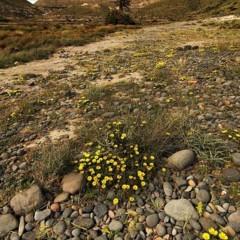 Foto 11 de 31 de la galería jose-maria-cuellar en Xataka Foto