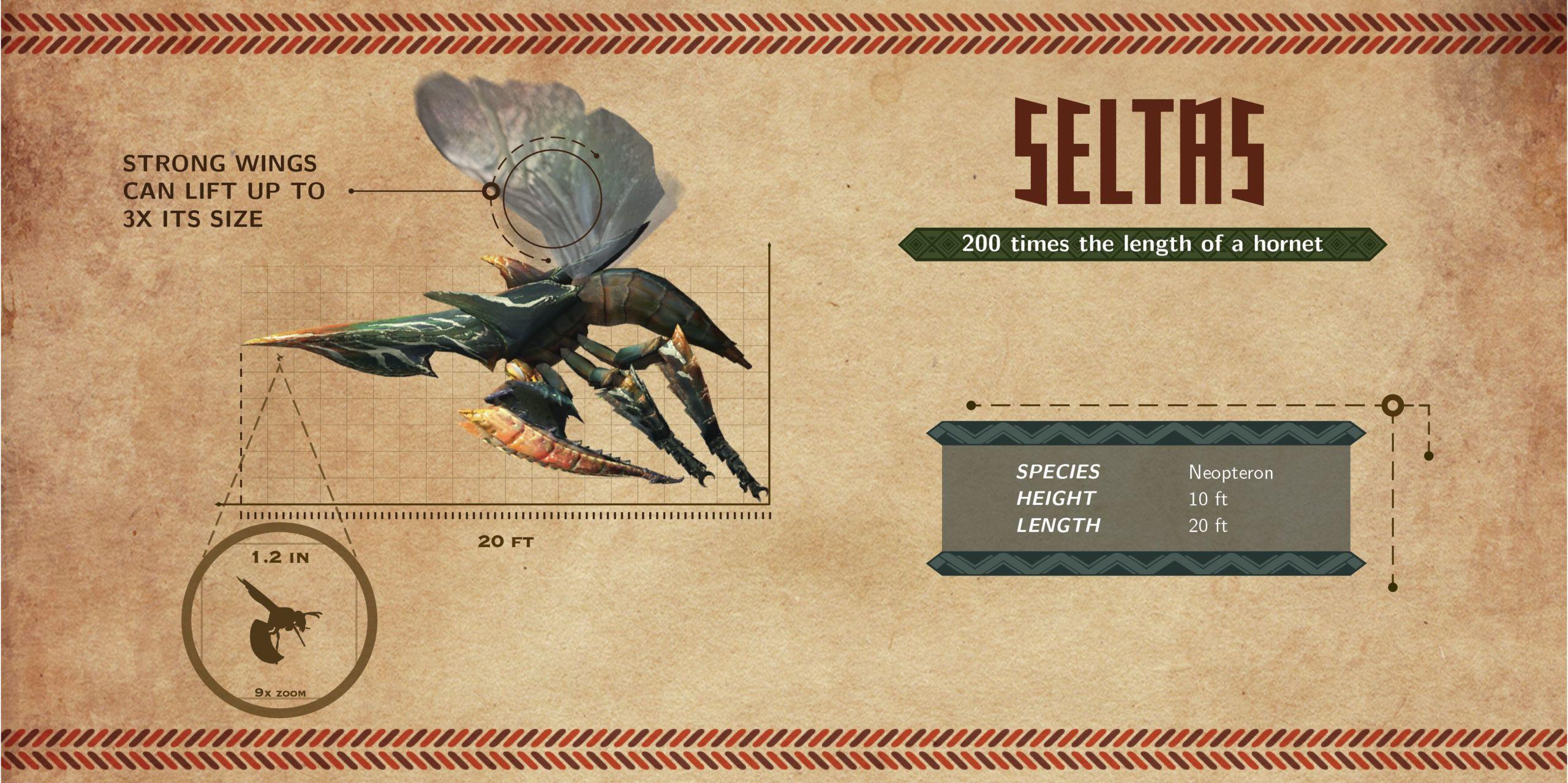 Foto de Infografía Monster Hunter 4 (4/6)