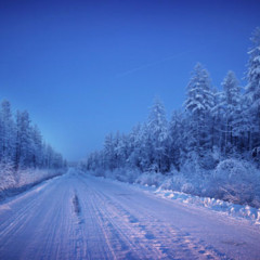 Foto 15 de 19 de la galería el-lugar-mas-frio-del-mundo en Trendencias Lifestyle