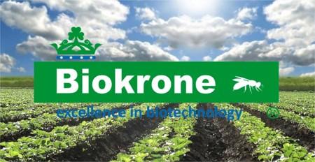 La empresa celayense Biokrone recibirá Premio Nacional de Tecnología e Innovación