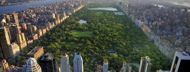 Vivir a menos de 200 metros de una zona verde ayudaría a nuestra salud cardiovascular