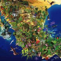 ¿Nos estamos acabando México? Un repaso por las especies en peligro de extinción (I)