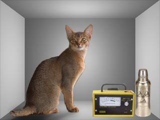 Los gatos cuánticos son difíciles de observar