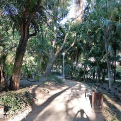 Foto 64 de 153 de la galería fotos-tomadas-con-el-huawei-p30-lite en Xataka Móvil