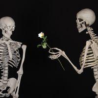 Las personas altruistas tienen más parejas sexuales