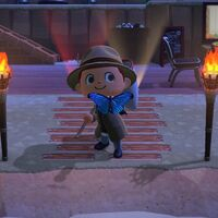 Animal Crossing: New Horizons: lista con todos los bichos de diciembre
