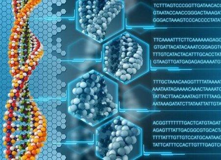 Usando ADN como disco duro