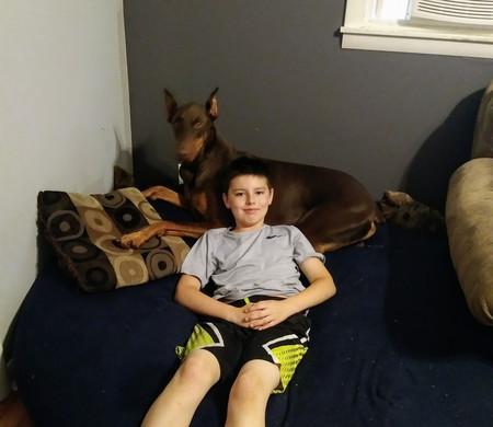 Su perro lo rescató y ahora él ha vendido sus juguetes para ayudarlo: la bonita historia de Connor y Copper
