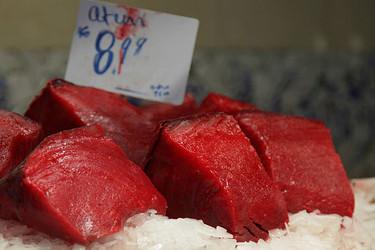 No consumas atún rojo