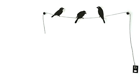 Pájaros que dan luz
