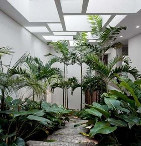 Jadines interiores muy bonitos pero pr cticos for Jardines exteriores para oficinas