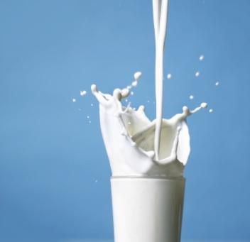 El mito de que la leche es mala para la salud (y II)