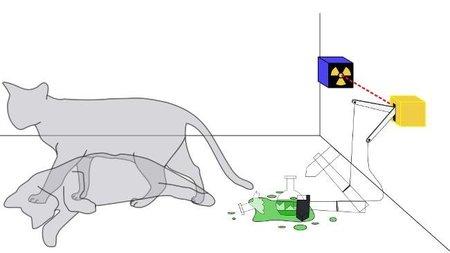 El gato de Schrödinger (I)