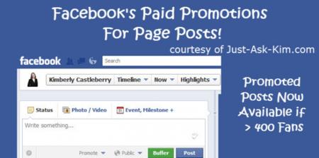 Facebook introduce los posts promovidos, infografía