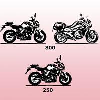 Gas Gas se vestirá de calle con tres nuevas motos: dos naked de 800 cc y 250 cc, y una touring de 800 cc